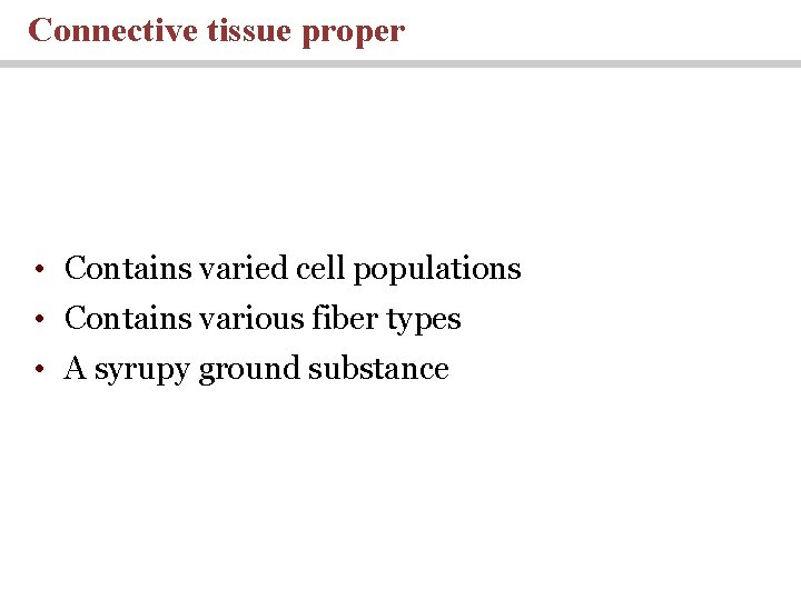 Connective tissue proper • Contains varied cell populations • Contains various fiber types •