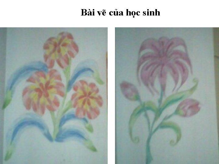 Bài vẽ của học sinh