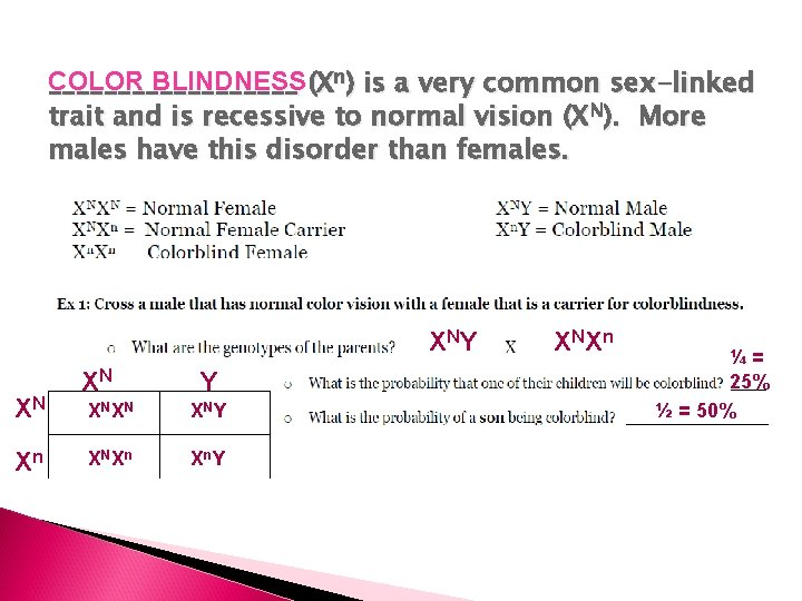 COLOR BLINDNESS _________ (Xn) is a very common sex-linked trait and is recessive to