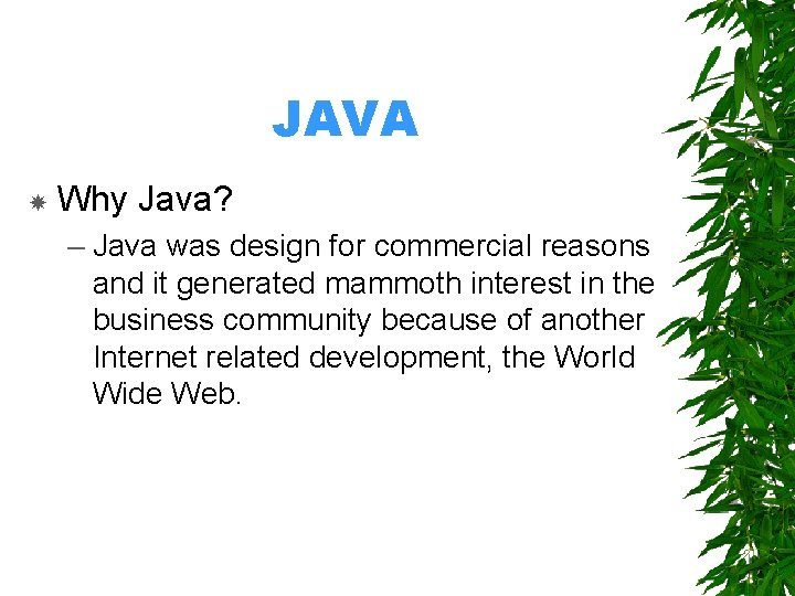 JAVA Why Java? – Java was design for commercial reasons and it generated mammoth