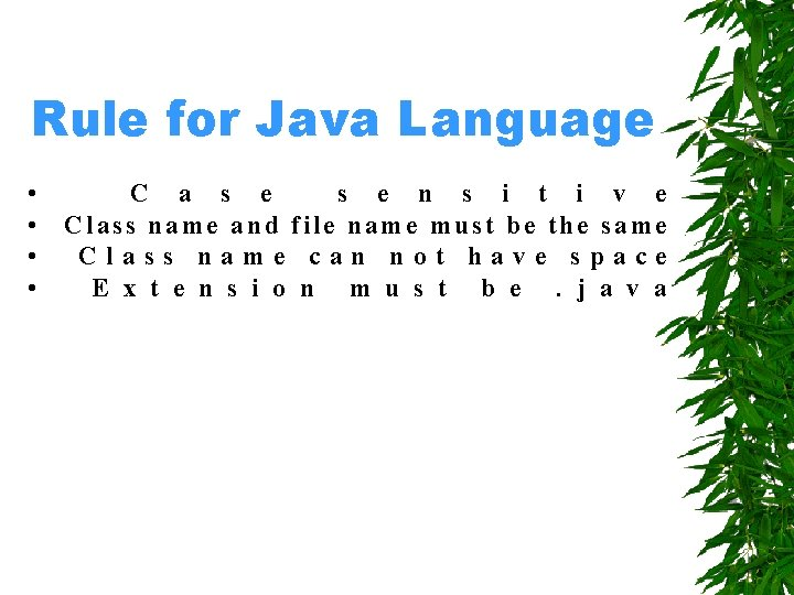 Rule for Java Language • • C a s e n s i t