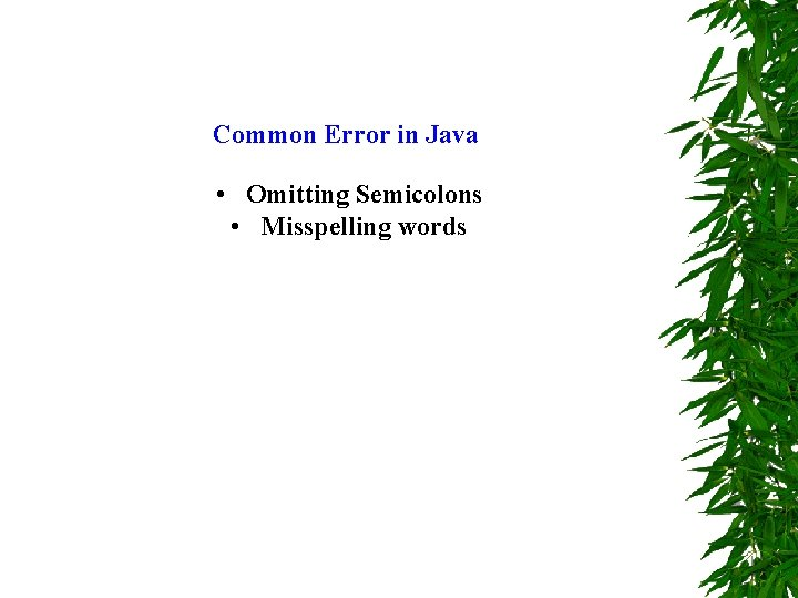 Common Error in Java • Omitting Semicolons • Misspelling words
