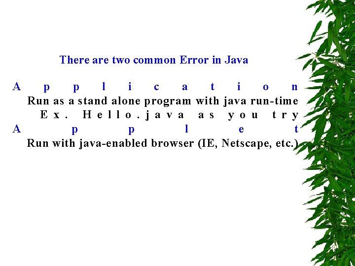 There are two common Error in Java A p p l i c a