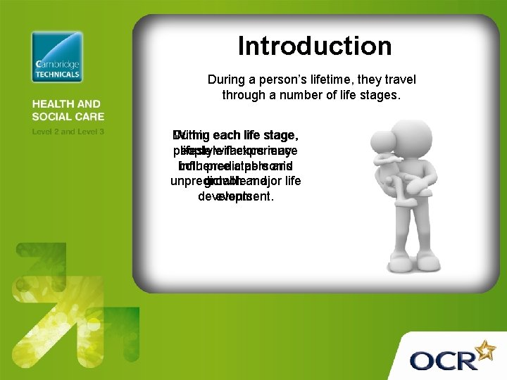 Introduction During a person's lifetime, they travel through a number of life stages. During