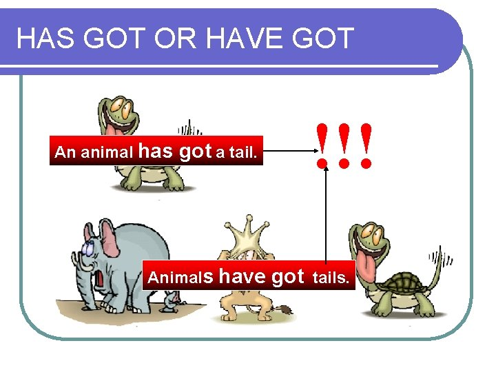 HAS GOT OR HAVE GOT An animal has !!! got a tail. Animals have