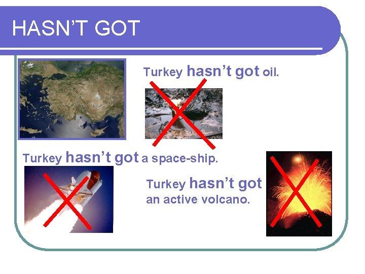 HASN'T GOT Turkey hasn't got oil. got a space-ship. Turkey hasn't got an active