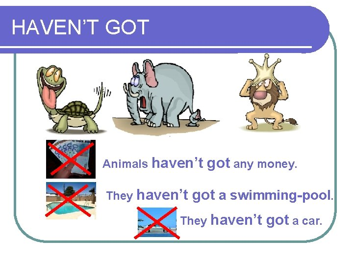 HAVEN'T GOT Animals haven't They haven't got any money. got a swimming-pool. They haven't