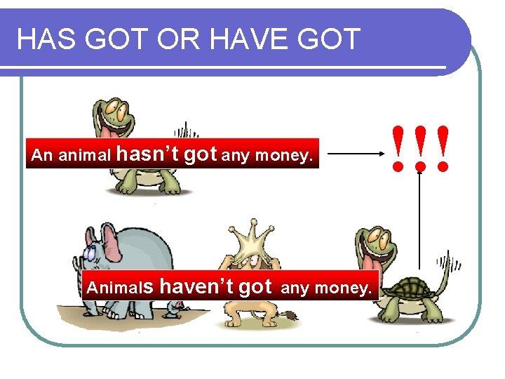 HAS GOT OR HAVE GOT An animal hasn't got any money. Animals haven't got