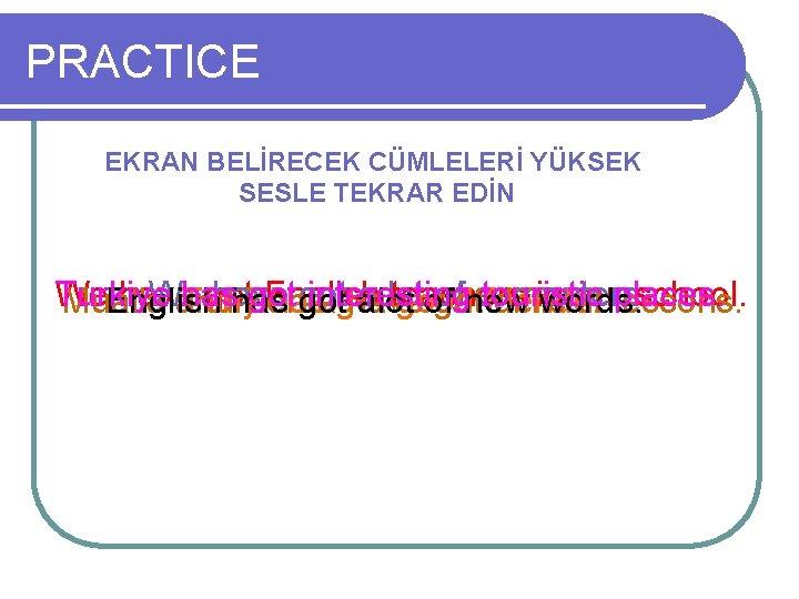 PRACTICE EKRAN BELİRECEK CÜMLELERİ YÜKSEK SESLE TEKRAR EDİN Turkiye We have We has got