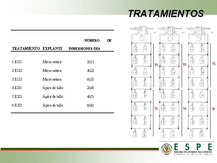 TRATAMIENTOS NÚMERO TRATAMIENTO EXPLANTE INMERSIONES /DÍA 1 E 1 I 1 Micro estaca 2(i