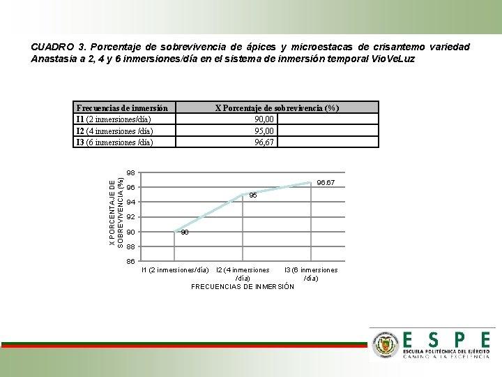 CUADRO 3. Porcentaje de sobrevivencia de ápices y microestacas de crisantemo variedad Anastasia a