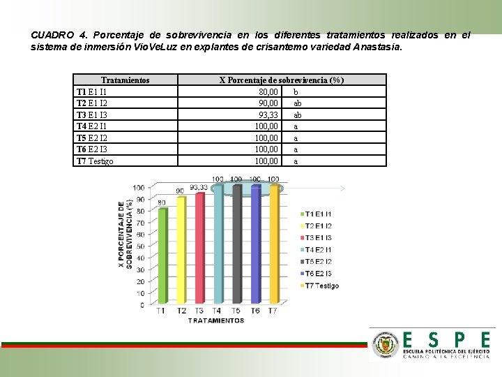 CUADRO 4. Porcentaje de sobrevivencia en los diferentes tratamientos realizados en el sistema de