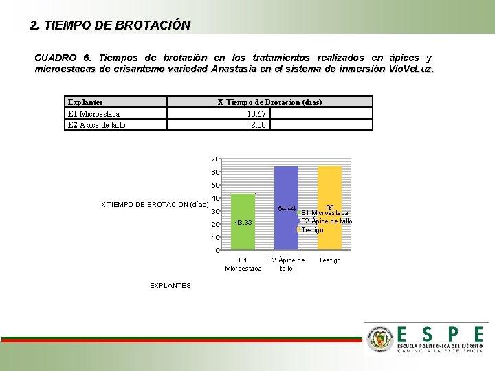 2. TIEMPO DE BROTACIÓN CUADRO 6. Tiempos de brotación en los tratamientos realizados en