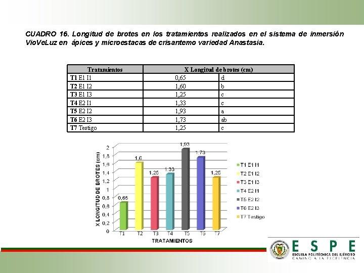 CUADRO 16. Longitud de brotes en los tratamientos realizados en el sistema de inmersión