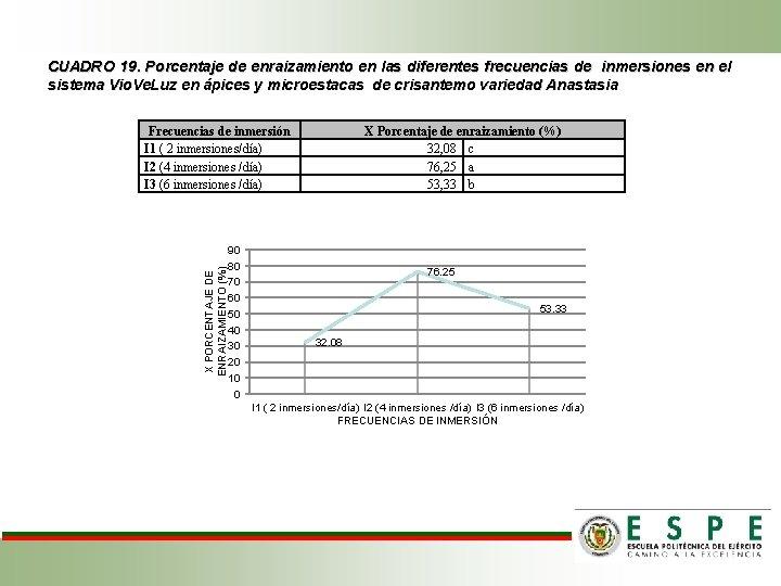 CUADRO 19. Porcentaje de enraizamiento en las diferentes frecuencias de inmersiones en el sistema