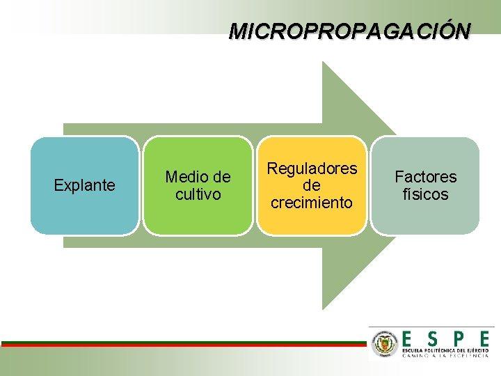 MICROPROPAGACIÓN Explante Medio de cultivo Reguladores de crecimiento Factores físicos