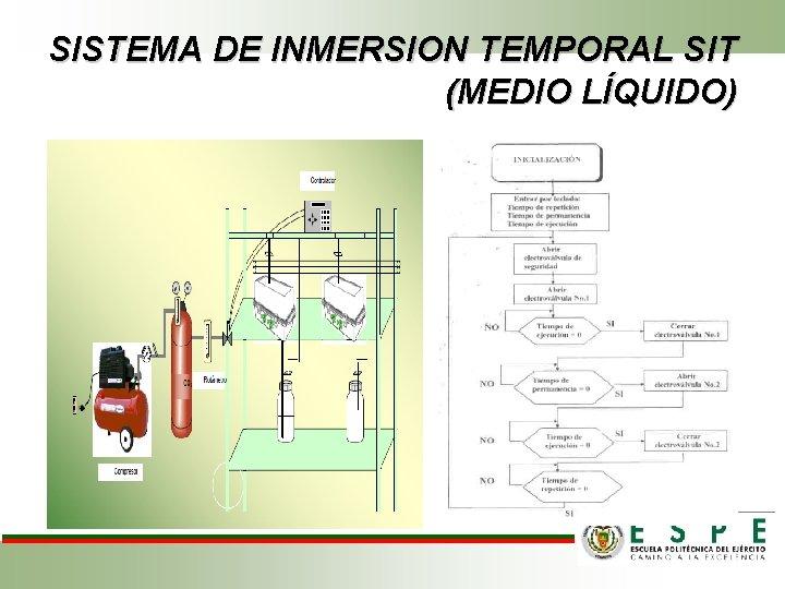 SISTEMA DE INMERSION TEMPORAL SIT (MEDIO LÍQUIDO)
