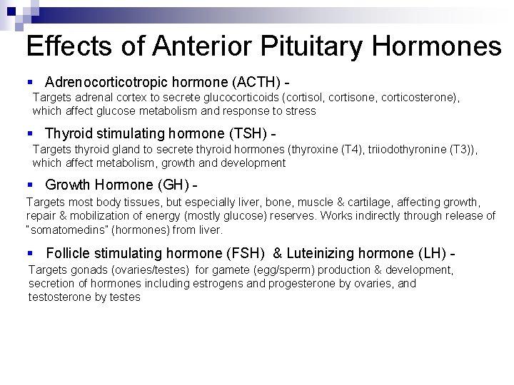 Effects of Anterior Pituitary Hormones § Adrenocorticotropic hormone (ACTH) Targets adrenal cortex to secrete