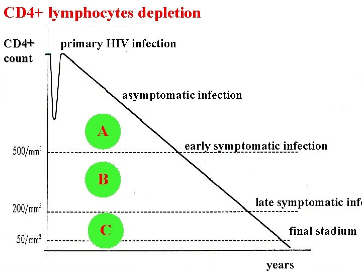 CD 4+ lymphocytes depletion CD 4+ count primary HIV infection asymptomatic infection A early