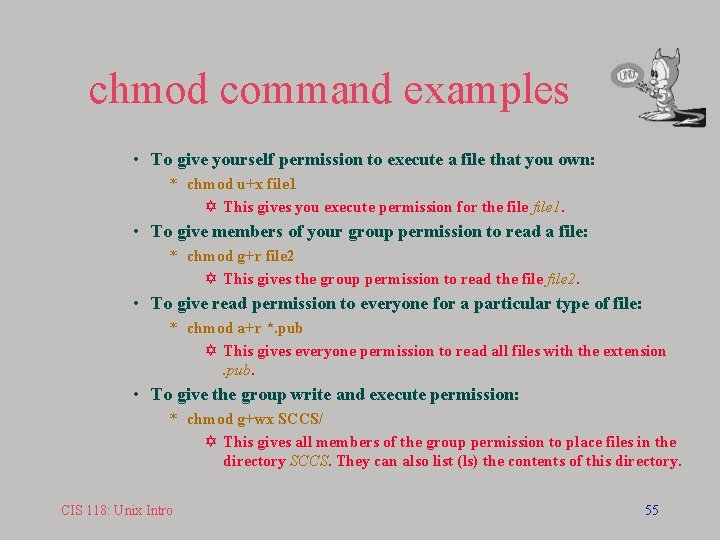 chmod command examples • To give yourself permission to execute a file that you