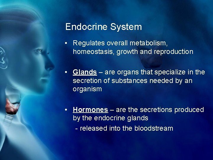 Endocrine System • Regulates overall metabolism, homeostasis, growth and reproduction • Glands – are