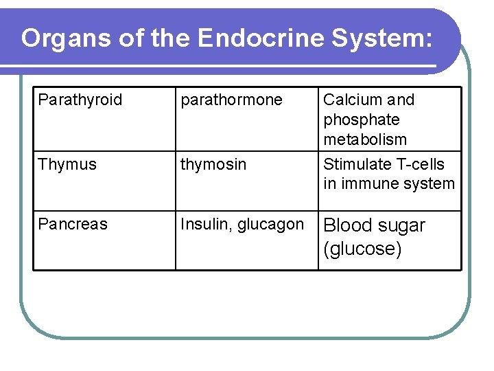 Organs of the Endocrine System: Parathyroid parathormone Calcium and phosphate metabolism Thymus thymosin Stimulate