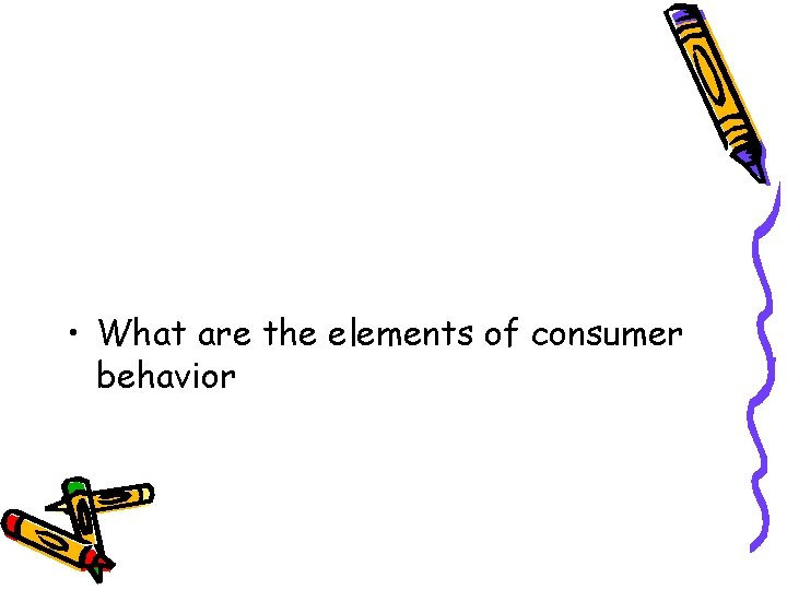 • What are the elements of consumer behavior