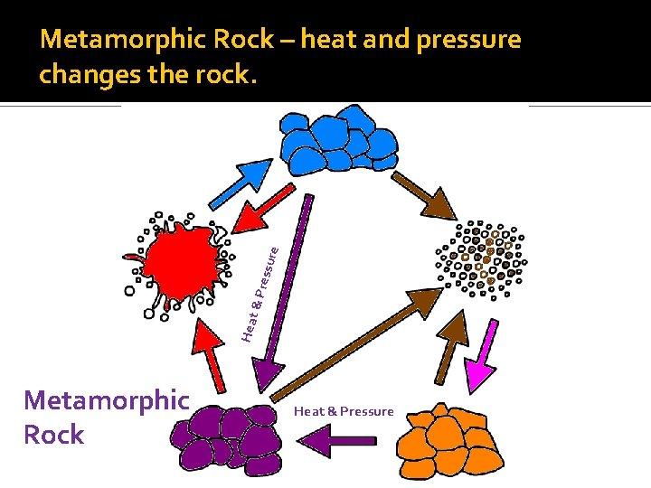 Hea t&P ressu re Metamorphic Rock – heat and pressure changes the rock. Metamorphic