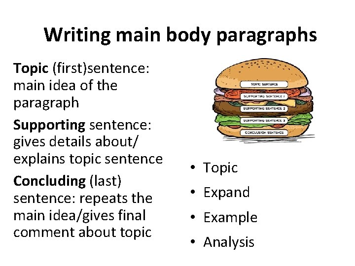 Writing main body paragraphs Topic (first)sentence: main idea of the paragraph Supporting sentence: gives