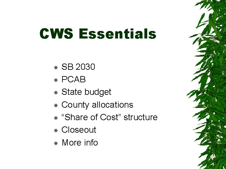 """CWS Essentials SB 2030 PCAB State budget County allocations """"Share of Cost"""" structure Closeout"""