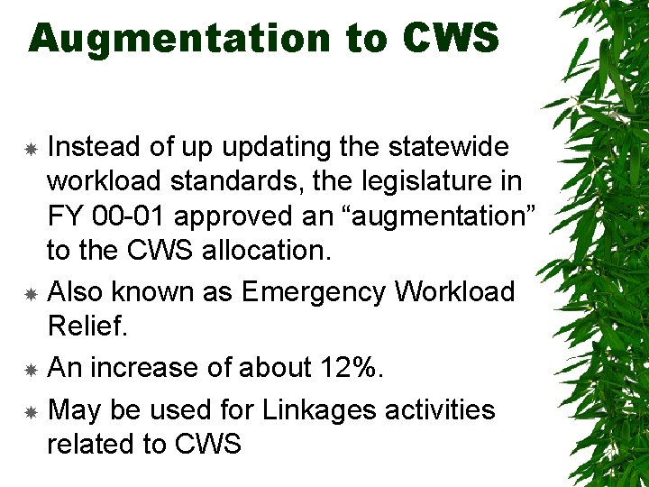 Augmentation to CWS Instead of up updating the statewide workload standards, the legislature in