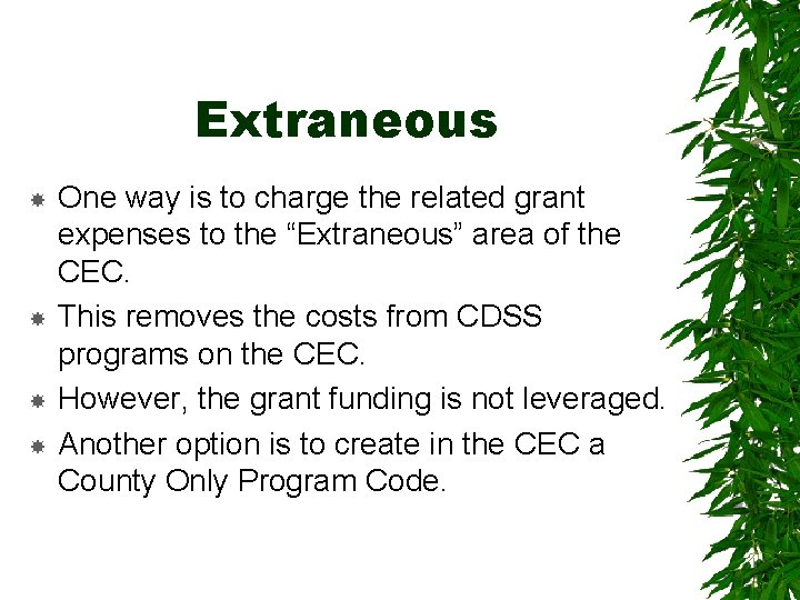 """Extraneous One way is to charge the related grant expenses to the """"Extraneous"""" area"""