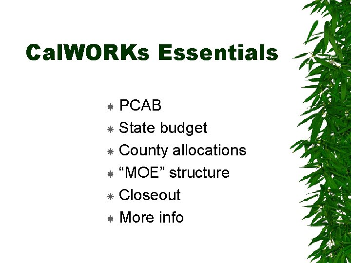 """Cal. WORKs Essentials PCAB State budget County allocations """"MOE"""" structure Closeout More info"""