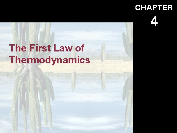 CHAPTER 4 The First Law of Thermodynamics