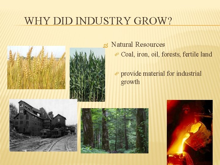 WHY DID INDUSTRY GROW? Natural Resources Coal, iron, oil, forests, fertile land provide material