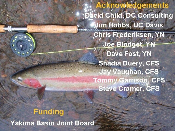 Acknowledgements David Child, DC Consulting Jim Hobbs, UC Davis Chris Frederiksen, YN Joe Blodget,