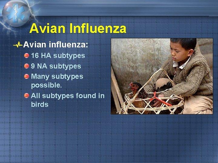 Avian Influenza Avian influenza: 16 HA subtypes 9 NA subtypes Many subtypes possible. All
