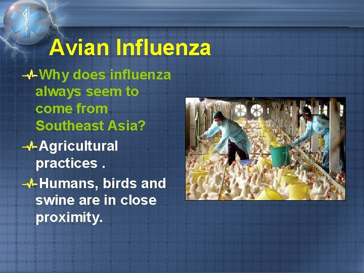 Avian Influenza Why does influenza always seem to come from Southeast Asia? Agricultural practices.