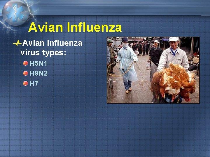 Avian Influenza Avian influenza virus types: H 5 N 1 H 9 N 2