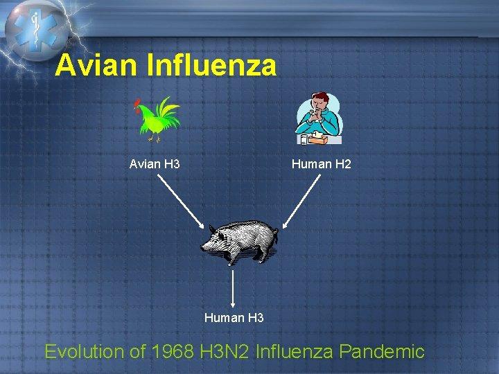 Avian Influenza Avian H 3 Human H 2 Human H 3 Evolution of 1968