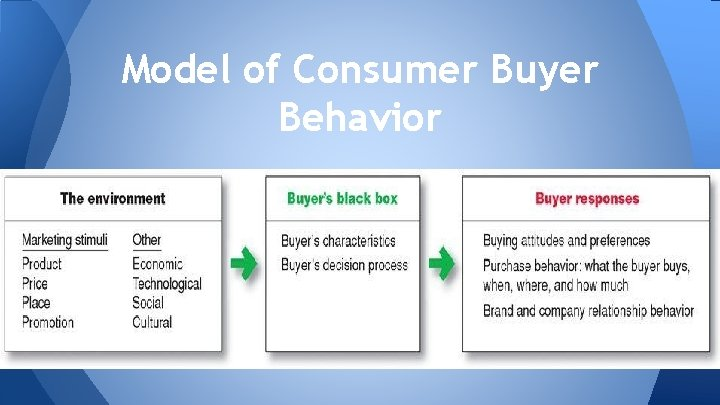 Model of Consumer Buyer Behavior