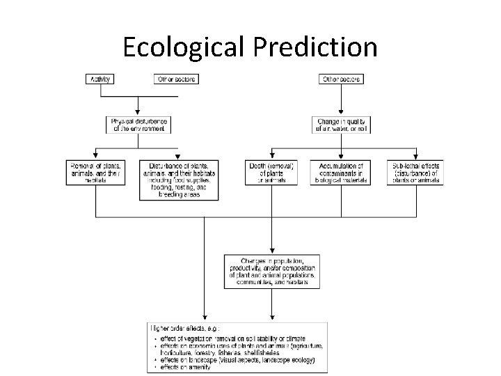 Ecological Prediction