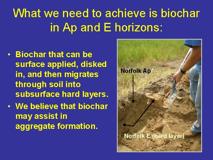 What we need to achieve is biochar in Ap and E horizons: • Biochar