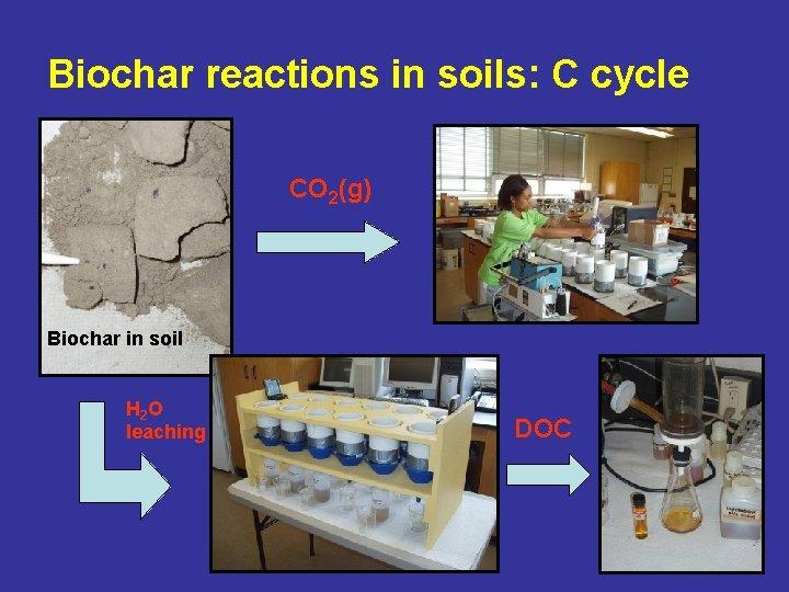 Biochar reactions in soils: C cycle CO 2(g) Biochar in soil H 2 O