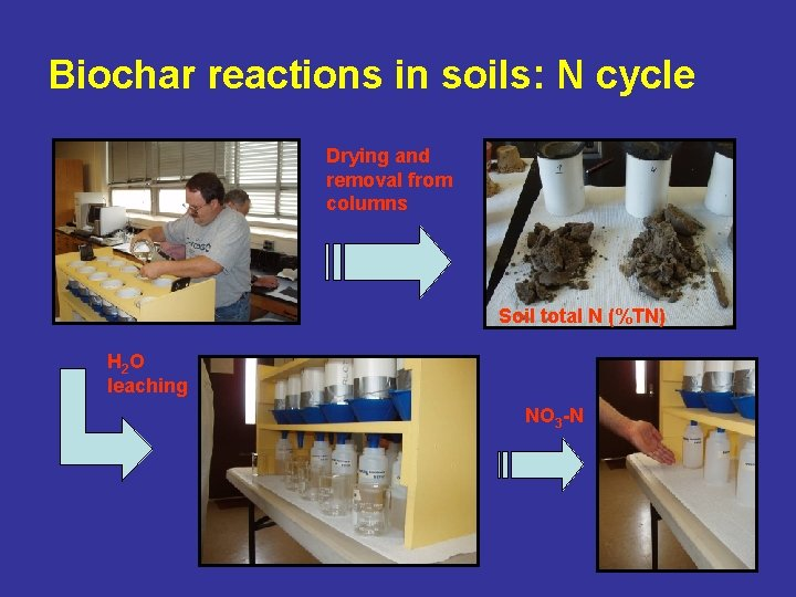 Biochar reactions in soils: N cycle Drying and removal from columns Soil total N