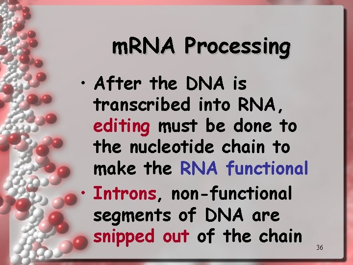 m. RNA Processing • After the DNA is transcribed into RNA, editing must be