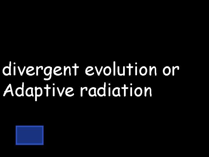 divergent evolution or Adaptive radiation