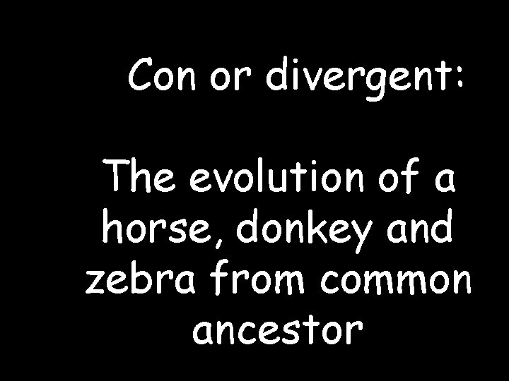 Con or divergent: The evolution of a horse, donkey and zebra from common
