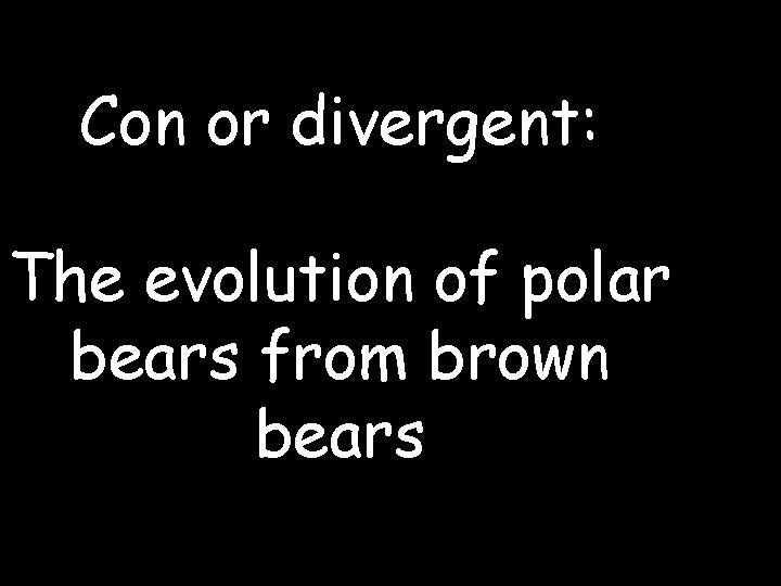 Con or divergent: The evolution of polar bears from brown bears