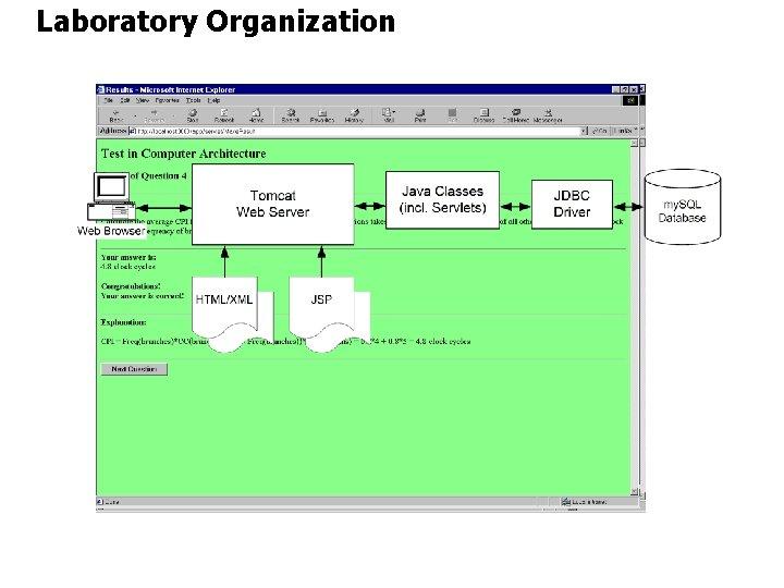 Laboratory Organization